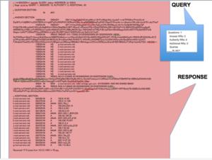 Comparativa del tamaño relativo de una petición DNS válida y su respuesta